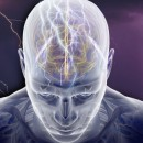 Brain Injury of All Sizes can Trigger Grand Mal Seizures