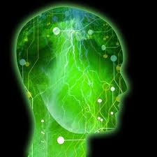 Can Anyone Suffering From A Seizures Disorder Have A Normal Life When Treated brain-epilepsy