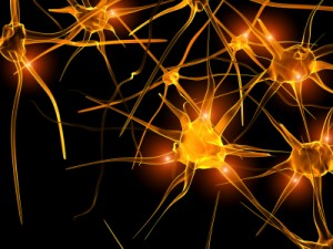 Electrical Signals Imbalance And Grand Mal Seizures